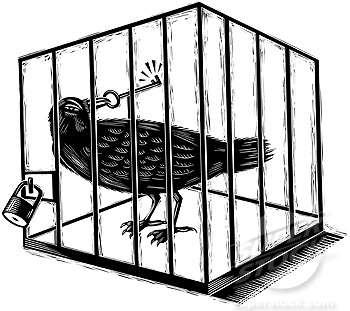An illustration of a jail bird in black and white