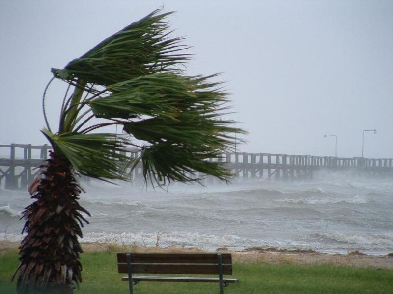 forte-vento