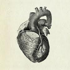 hhhheart