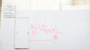 niloi-544x408