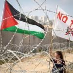 notav palestina