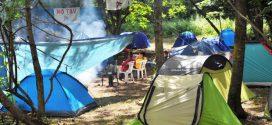 14-31 Luglio, campeggio No Tav – Il programma